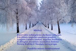 kaledos2013